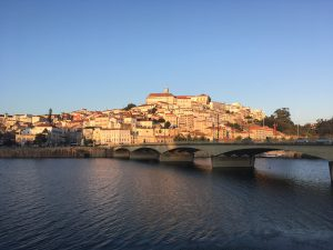 """Conference """"15th Mediterranean Conference on Medical and Biological Engineering and Computing"""", Coimbra"""