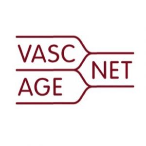 """Successful first Working Group Meeting of the European COST Action """"Network for Research in Vascular Ageing"""" (VascAgeNet, CA18216)"""